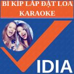 Làm Sao Để Lắp Loa Karaoke Hay.