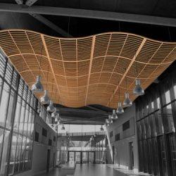 fa9a2854c83731c499cca2628f0f1e66--ceiling-canopy-ceiling-panels