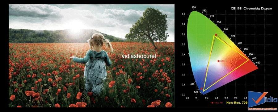 Máy chiếu gia đình W8000 của BenQ đạt chứng nhận THX® HD Display