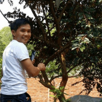 anhThai-VungTau